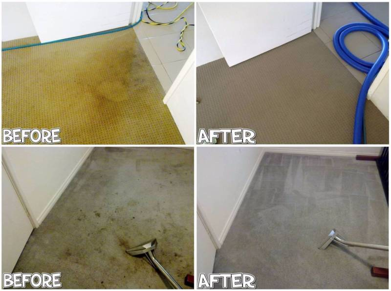Carpet Cleaning before after in Russell Island
