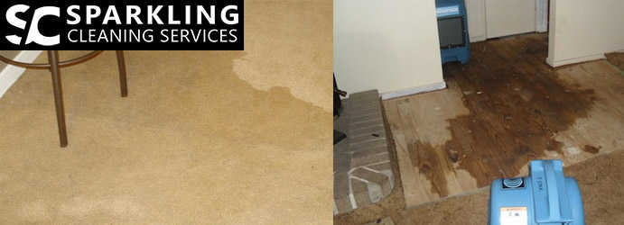 Carpet Water Damaged Restoration Como