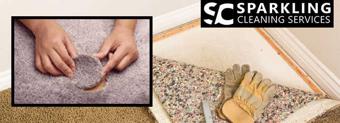 Professional Carpet Cleaning Services Parklea