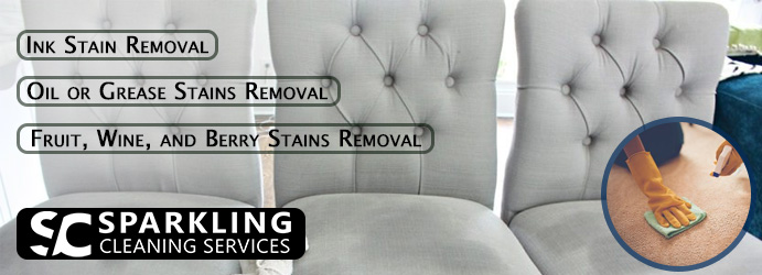 Professionals Couch Stain Removal
