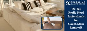 Professionals Upholstery Cleaning Services