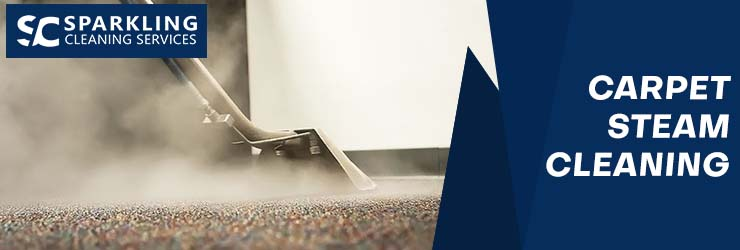 Carpet Steam Cleaning Palmview