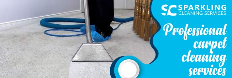 Professional Carpet Cleaning Huntingdale