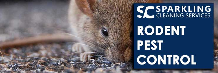 Rodent Pest Control Seaford Rise