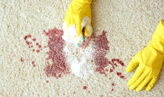 Carpet Blood Stain Removal