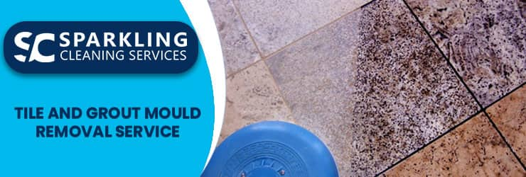 Best Tile And Grout Mould Removal Service
