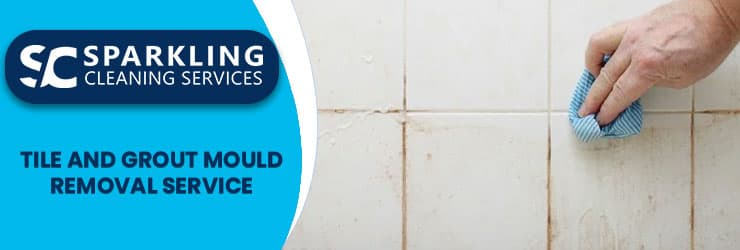 Tile And Grout Mould Removal Service