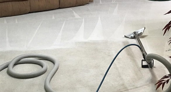 Carpet Sanitisation An Allergy Proof Service Capalaba