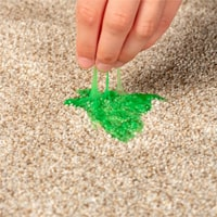 Carpet Slime Removal Forest Lake
