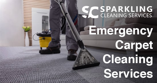 Emergency Carpet Cleaning Services Forest Lake