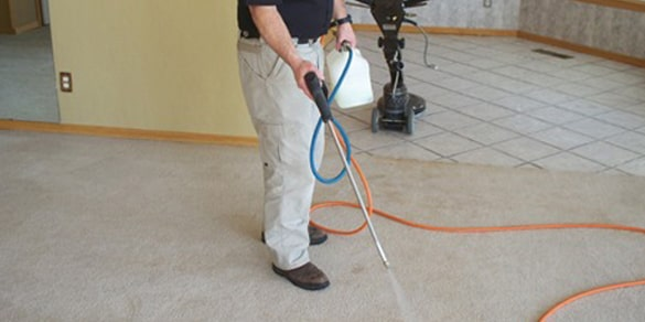 Scotchgard Carpet Protection Services Capalaba
