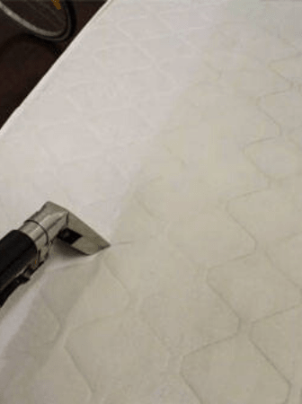 Mattress Dust Mites Treatment Brisbane