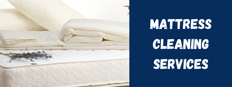 Need to Clean your Mattress? Read This!